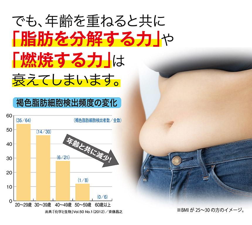 年齢とともに低下。図 でも年齢と共に「脂肪を分解する力」や「燃焼する力」は衰えてしまいます。