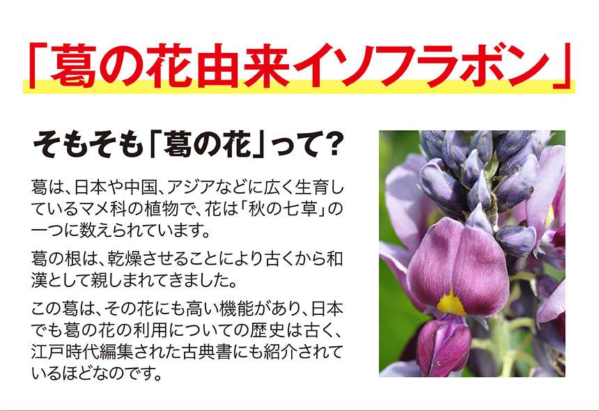 その秘密は「葛の花イソフラボン」